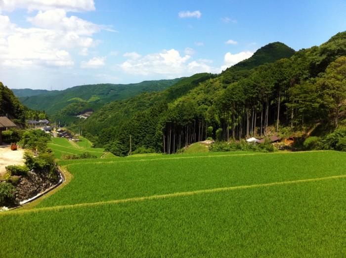 みやこ町犀川伊良原の風景